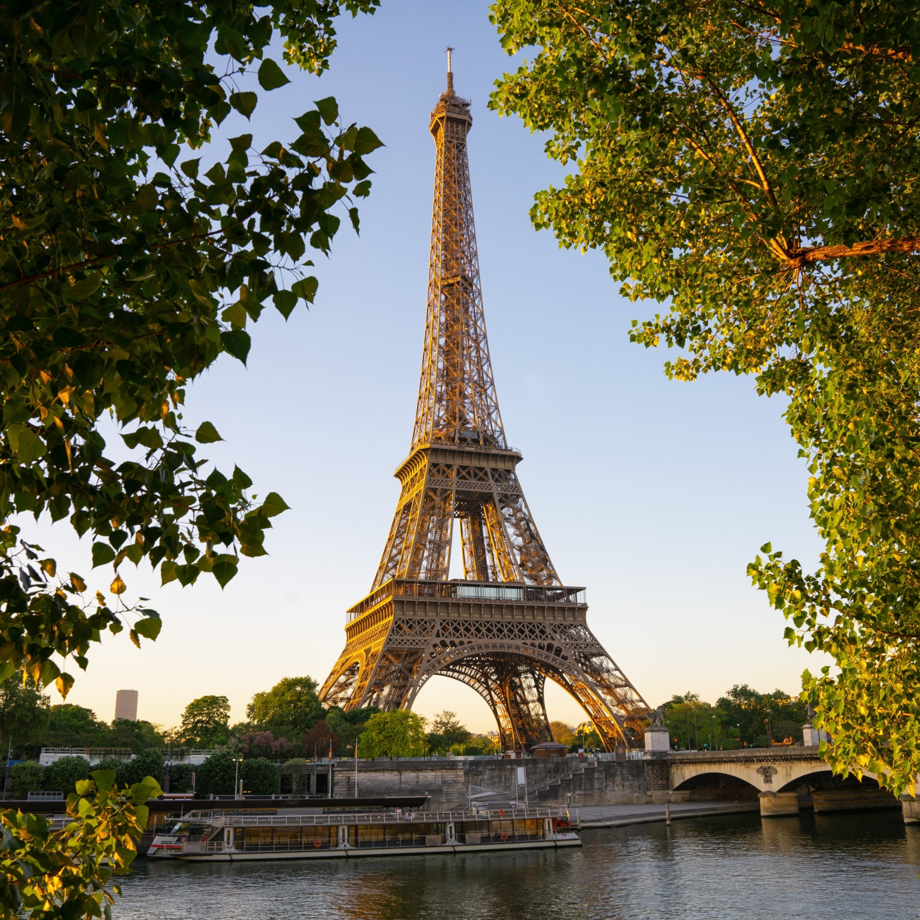 Paris Tower Nature iPad Wallpaper