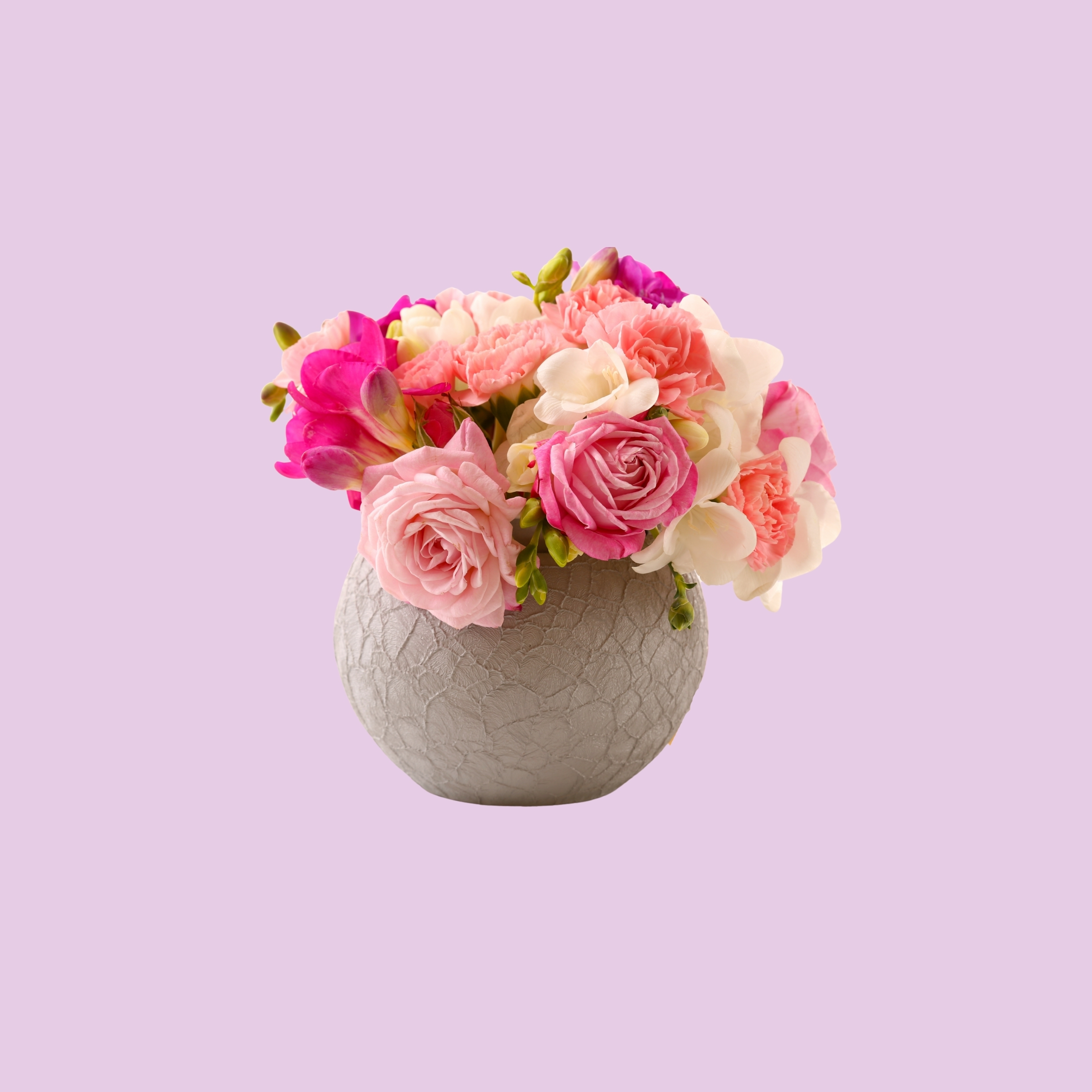Vase Pink Roses Floral Pot iPad Wallpaper
