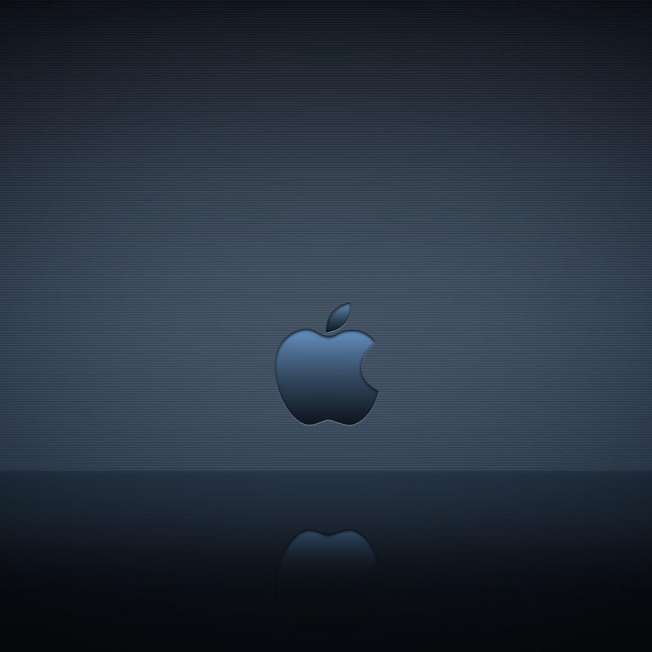 2732x2732 wallpapers 4k iPad Pro Apple Logo Reflection Ipad Wallpaper 2732x2732 pixels resolution