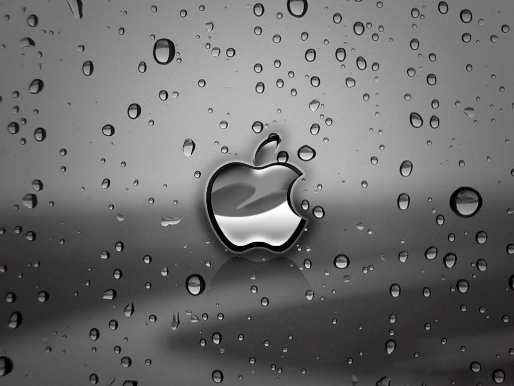1024x768 wallpaper 4k Apple Rain Ipad Wallpaper 1024x768 pixels resolution