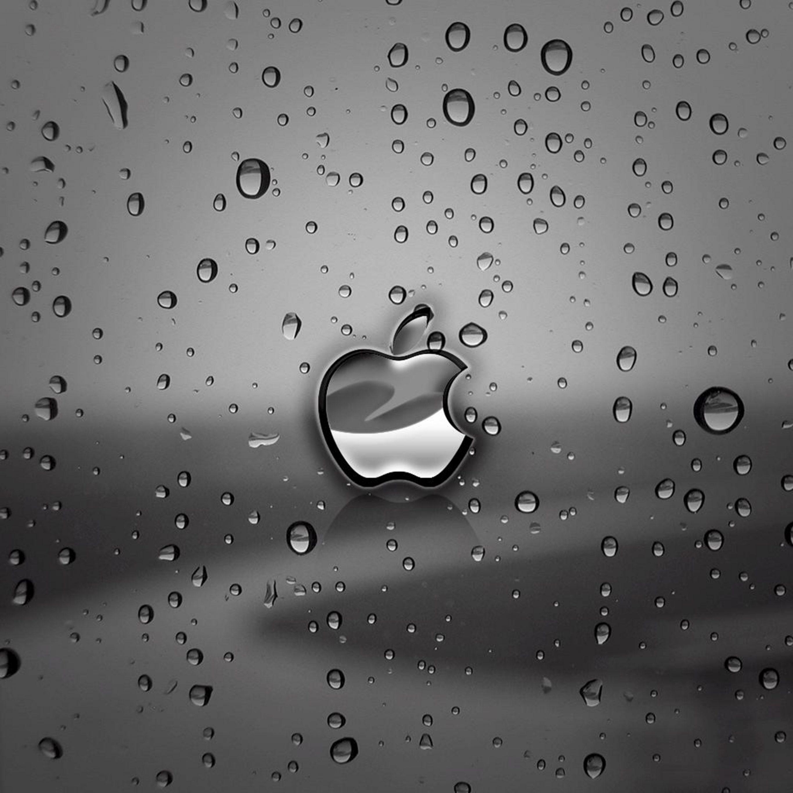 2732x2732 wallpapers 4k iPad Pro Apple Rain Ipad Wallpaper 2732x2732 pixels resolution