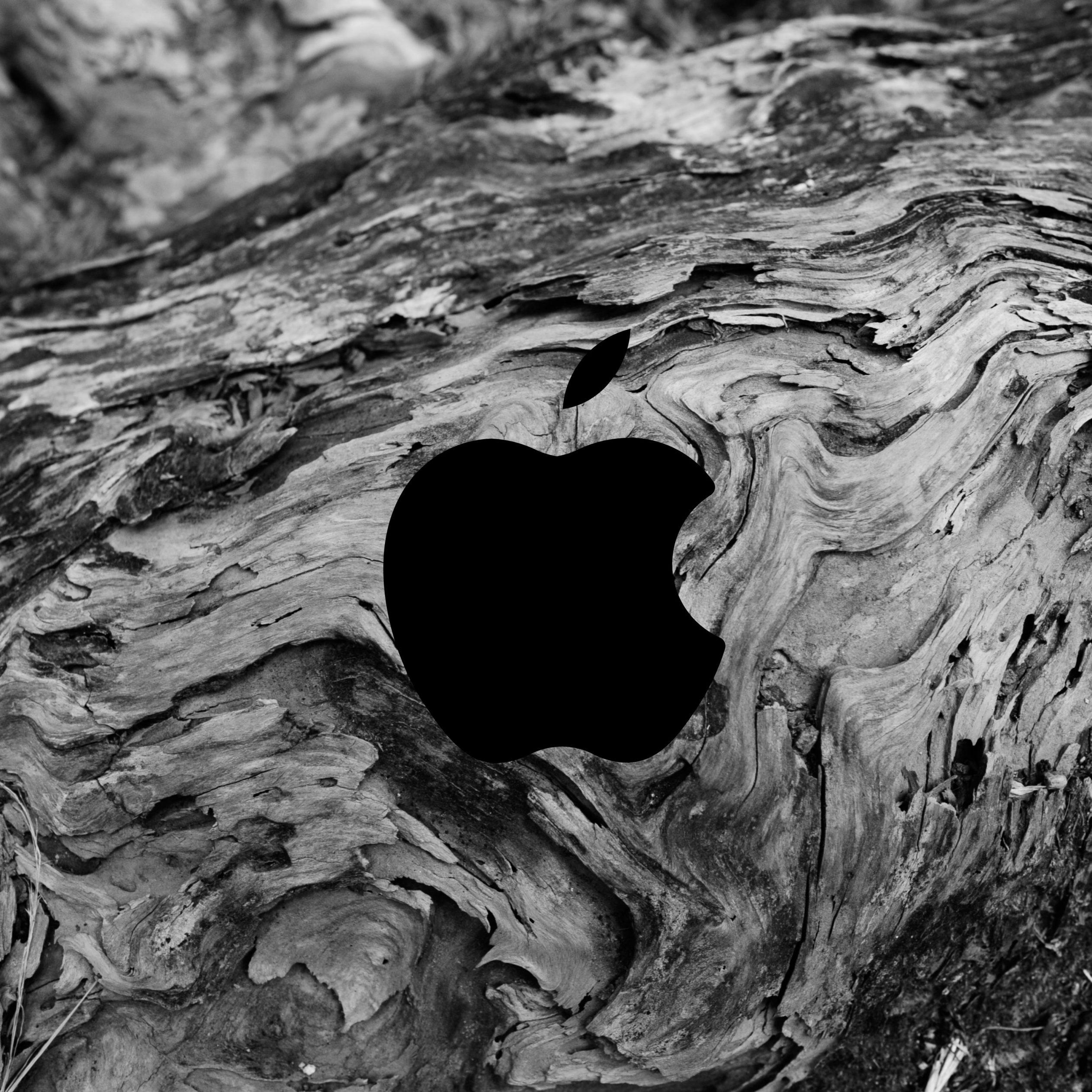 2524x2524 Parallax wallpaper 4k Apple Logo Abstract Wood Texture Pattern iPad Wallpaper 2524x2524 pixels resolution