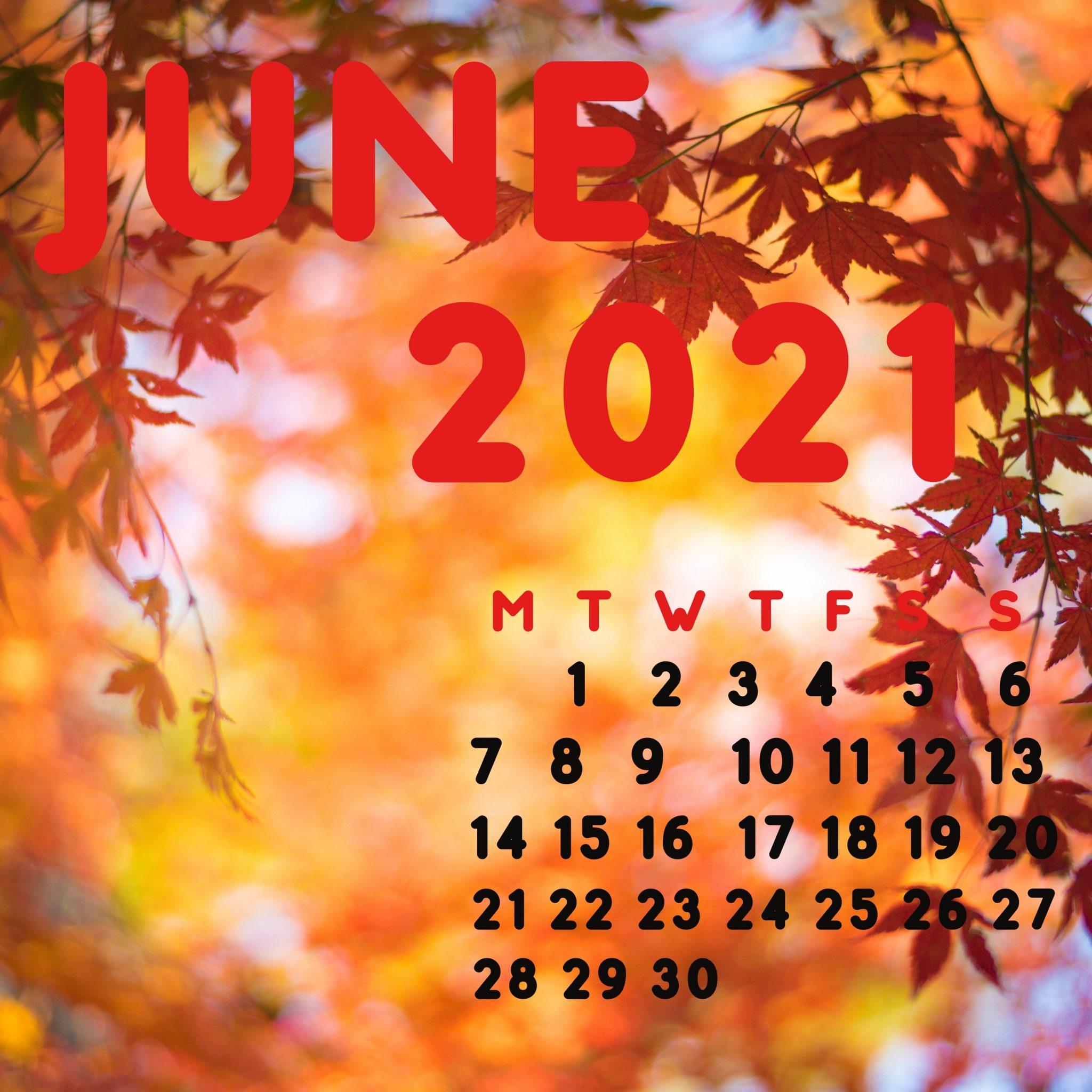 2048x2048 wallpapers iPad retina June 2021 iPad Wallpaper 2048x2048 pixels resolution