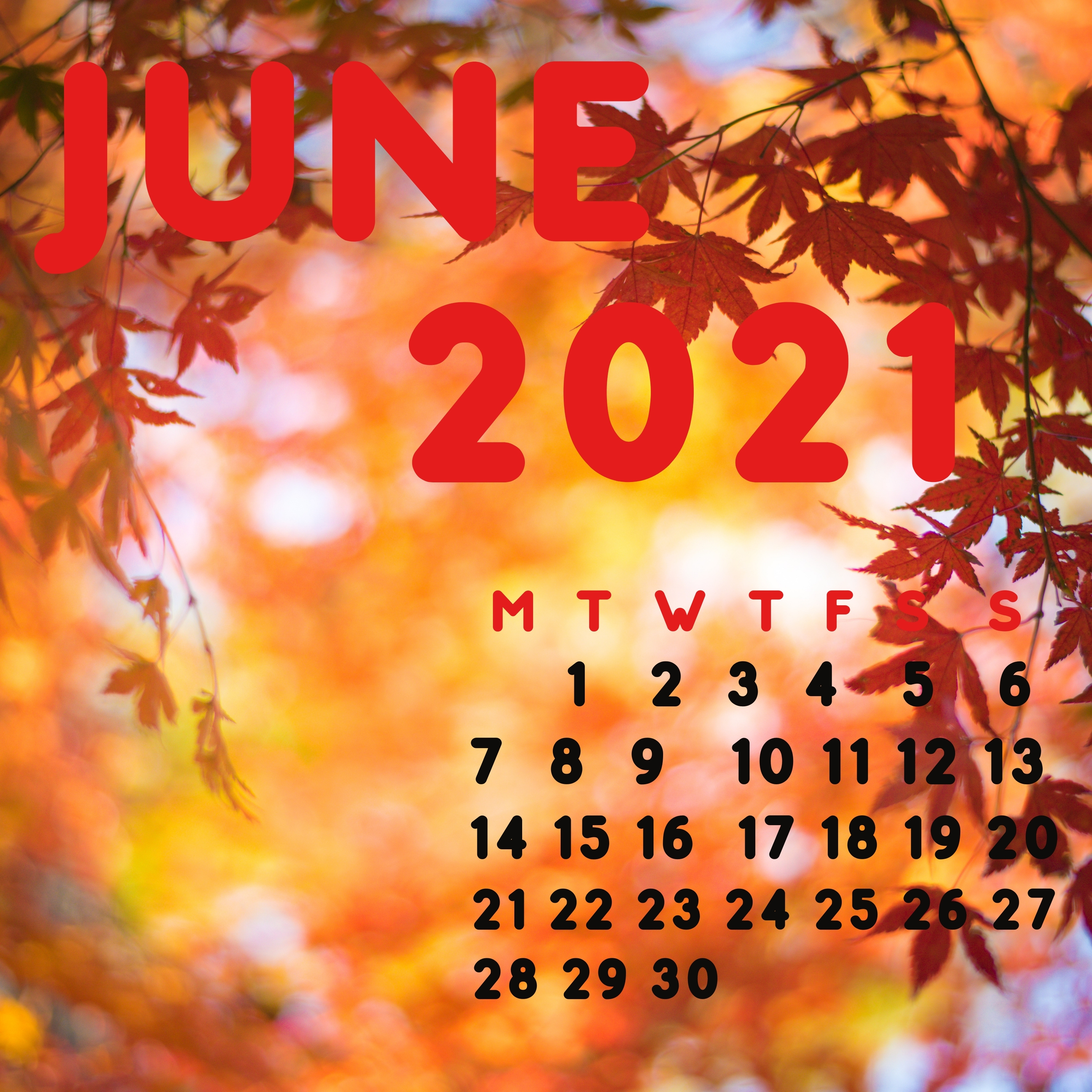iPad Wallpapers June 2021 iPad Wallpaper 3208x3208 px